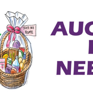 VCC Silent Auction – Now Accepting Donations
